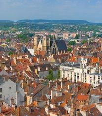 Dijon miniature