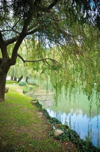 Moulin de Poincy - Parc 3