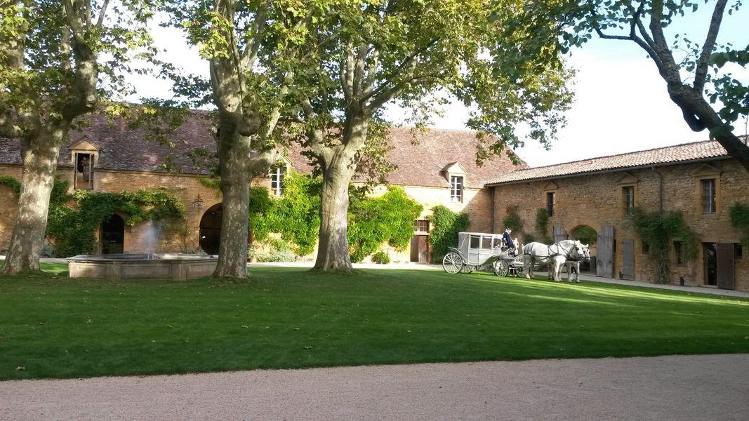 Château de Bagnols - Calèche dans le parc