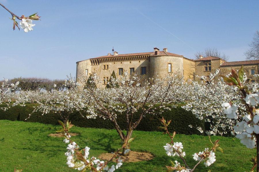 Château de Bagnols - Le Château 5