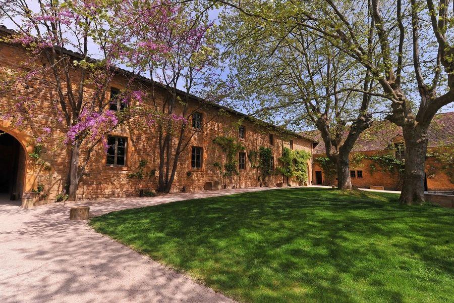 Château de Bagnols - Parc 6
