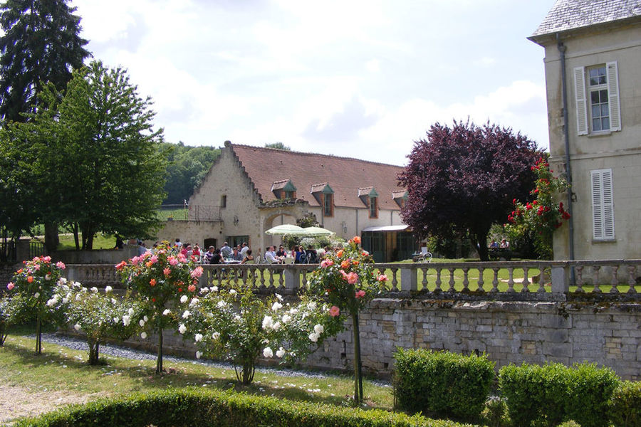 Château de Limé - Parc 2
