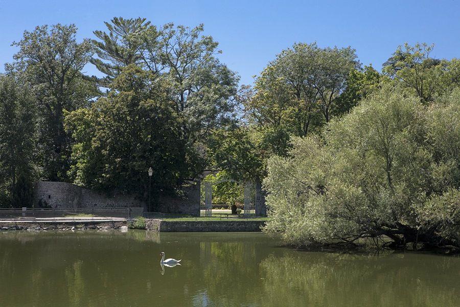 Domaine de Chassagny - Grille d'entrée
