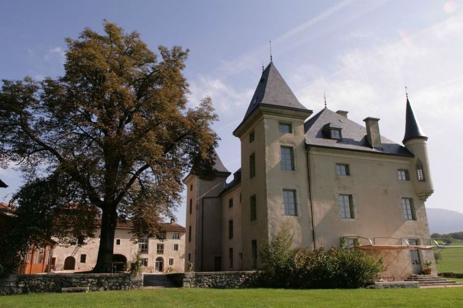 Chateau du Montalieu - Château du Montalieu