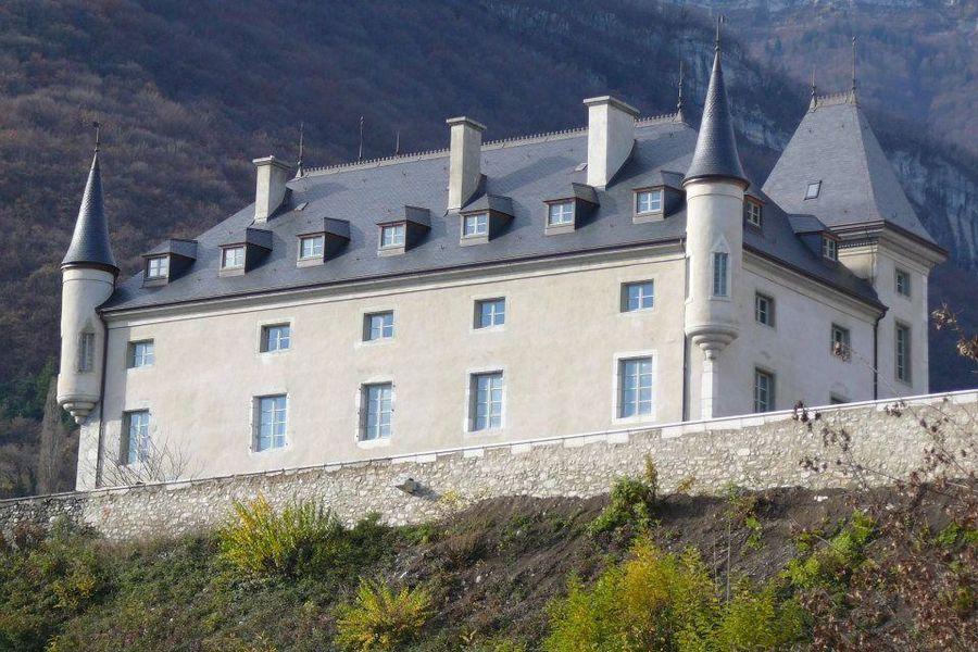 Chateau du Montalieu - Le Château