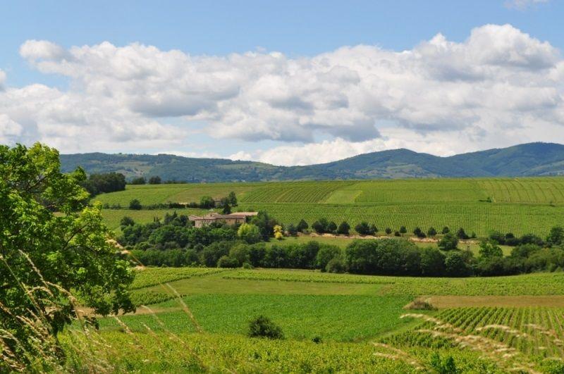 Domaine Albert - Vue sur la campagne