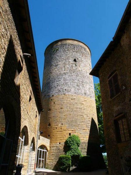 Chateau de Chessy Rhone - Le Château de Chessy (3)