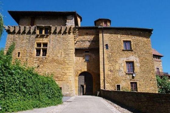Salle séminaire  - Château de Chessy