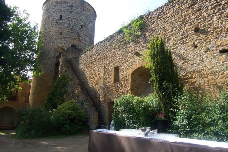 Chateau de Chessy Rhone - Parc du Château (1)