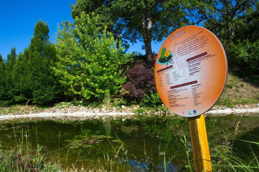 Campagne Saint Lazare - Environement & Parcours de la Biodiversité (3)