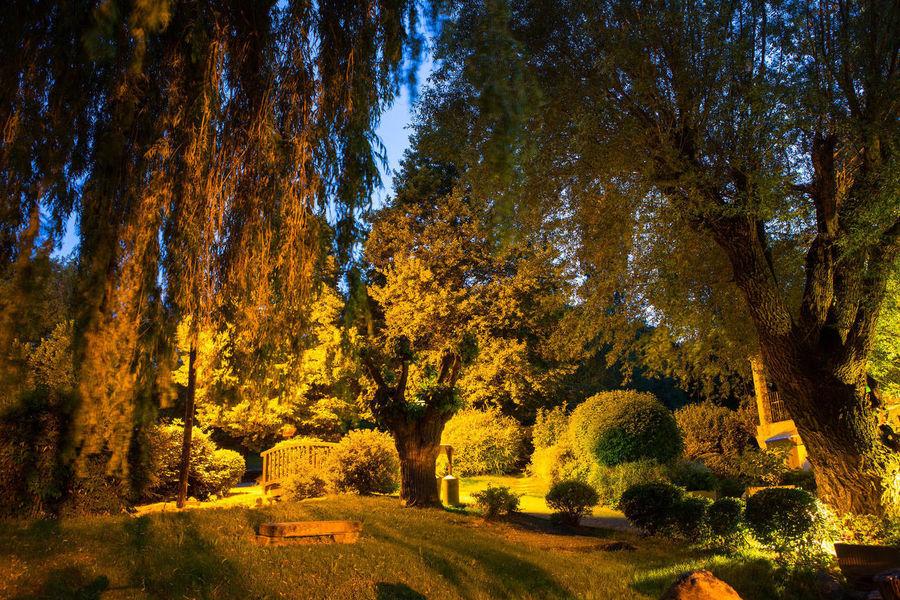 Campagne Saint Lazare - Environement & Parcours de la Biodiversité (11)