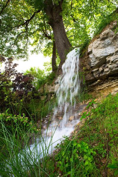 Campagne Saint Lazare - Environement & Parcours de la Biodiversité (13)