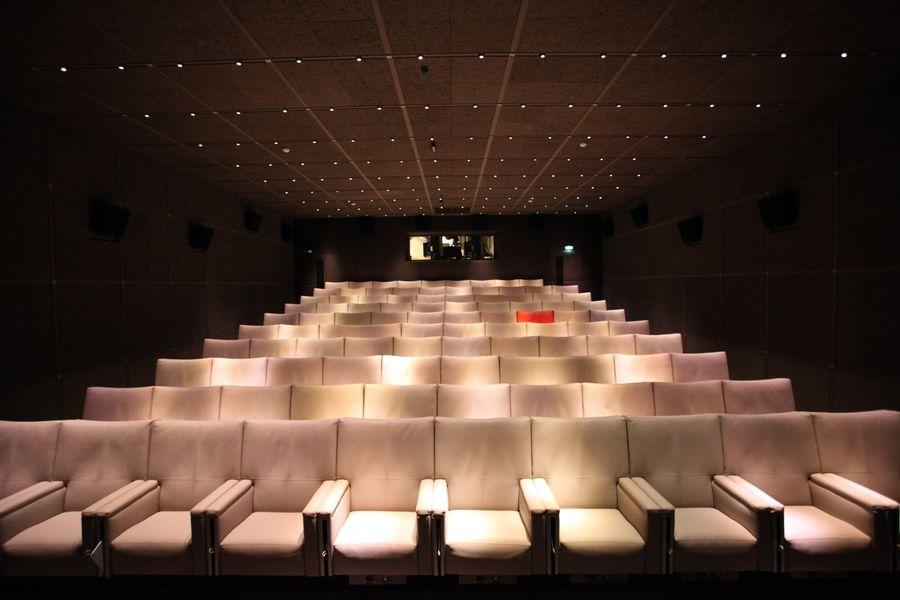 Le Royal Monceau Raffles Paris - Cinéma Katara 1