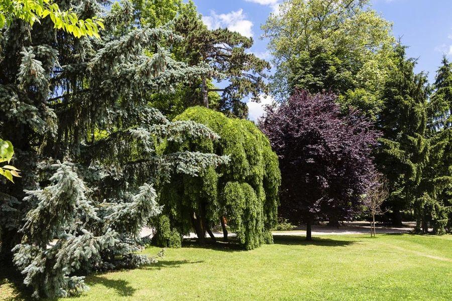 Domaine de Clairefontaine - Jardins
