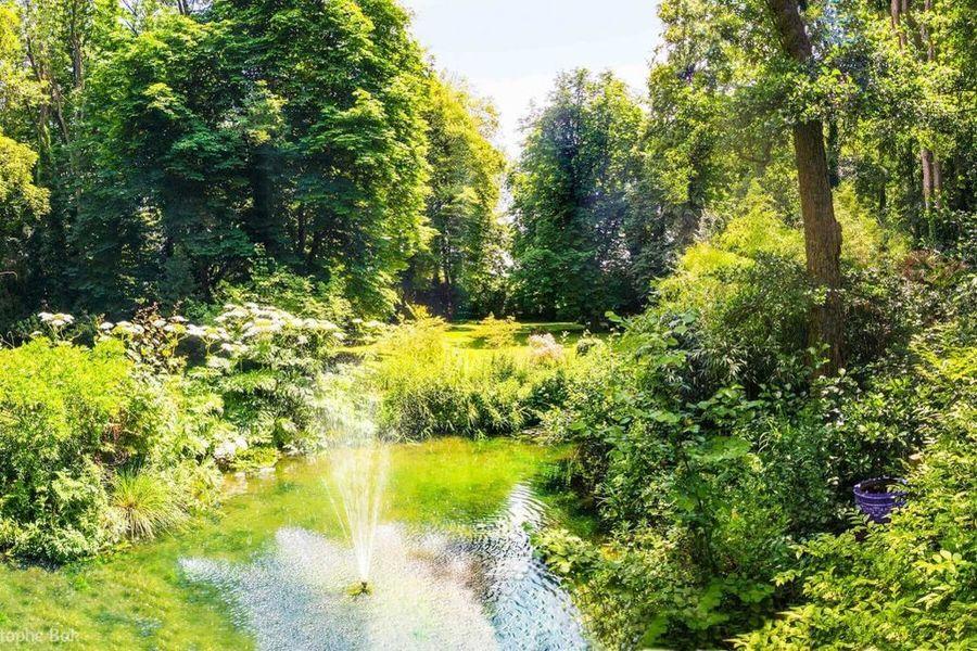 Les Jardins de l'Epicure - Jardin et Extérieurs