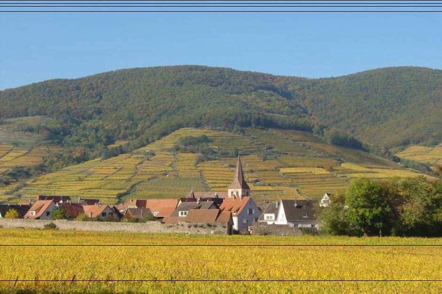 L'Abbaye d'Alspach - Vue d'ensemble