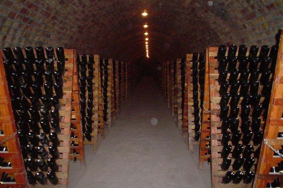 Le Moulin du Landion Hôtel & Spa - Cave à vin