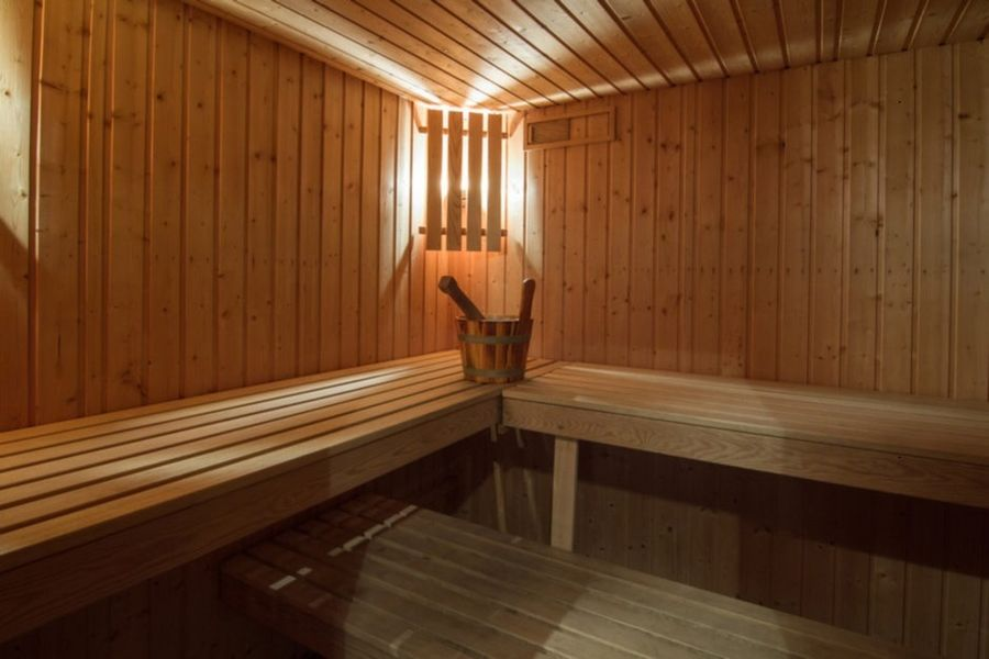 Hôtel Ithurria - Sauna