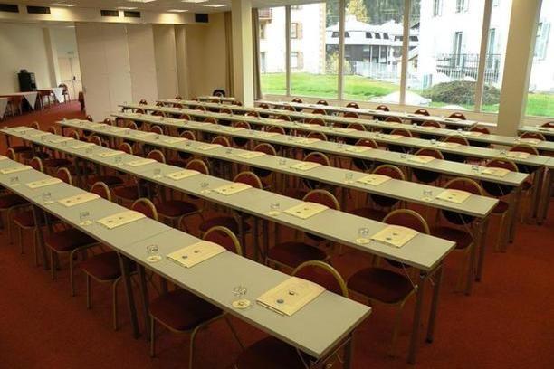 Hôtel de l'Alpina *** Salle de Séminaire