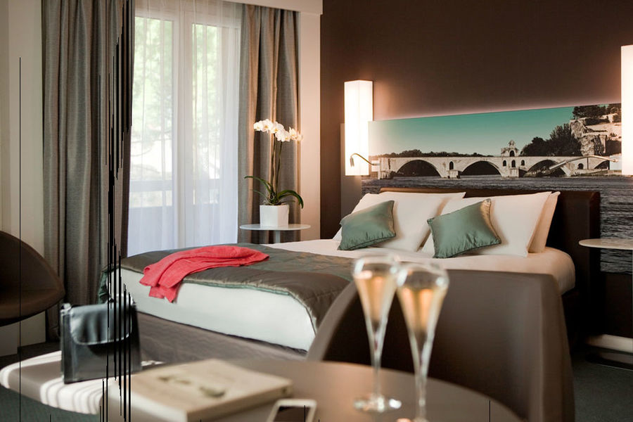 Mercure Pont d'Avignon Centre Hotel **** 6