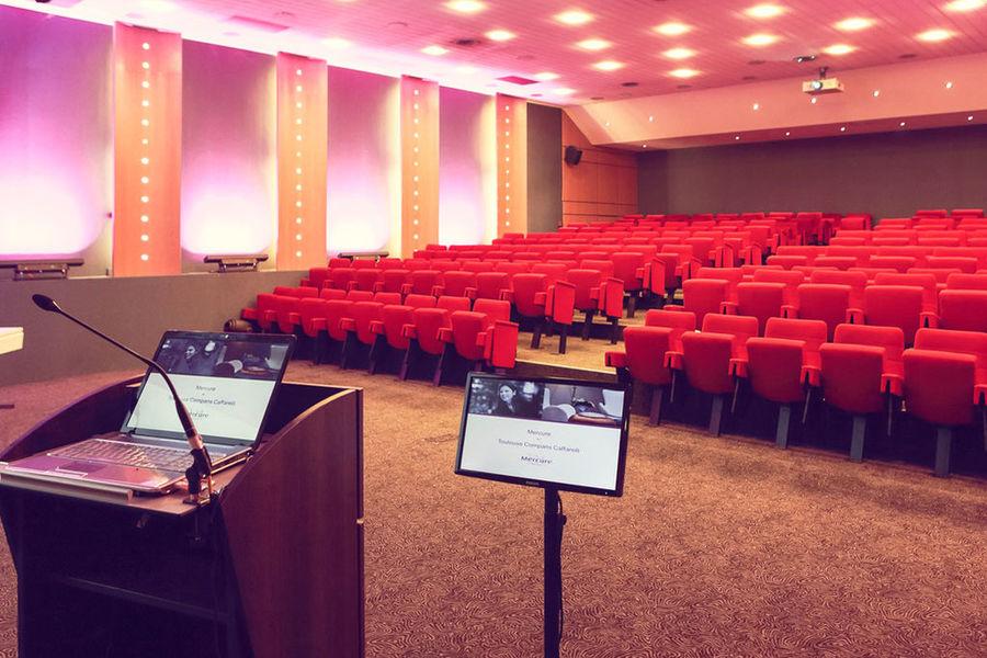 Mercure Toulouse Compans Caffarelli **** Salle de séminaire
