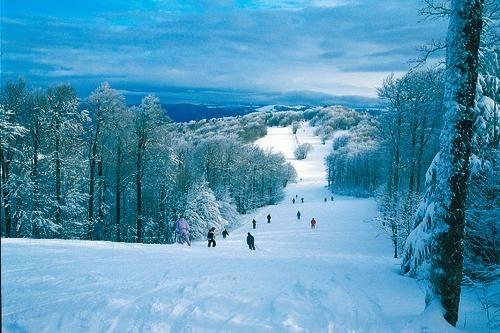 Azureva Bussang Massif des Vosges *** 31