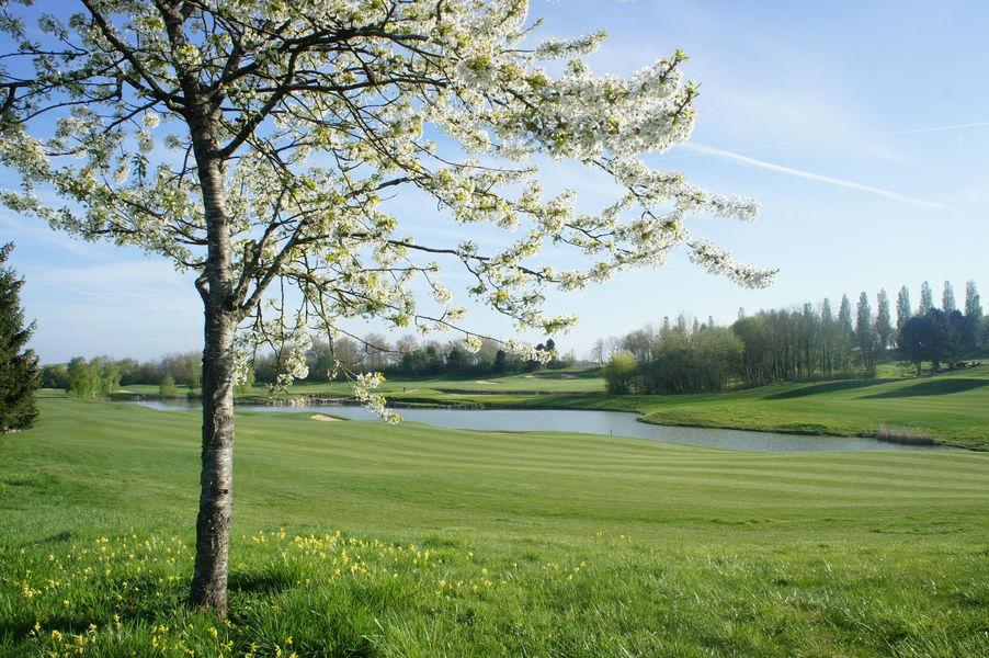 Domaine de Crécy cerisier en fleur sur le golf