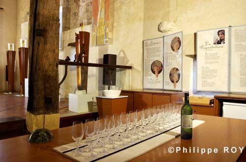 Maison de vins de l'Entre-deux-Mers 5