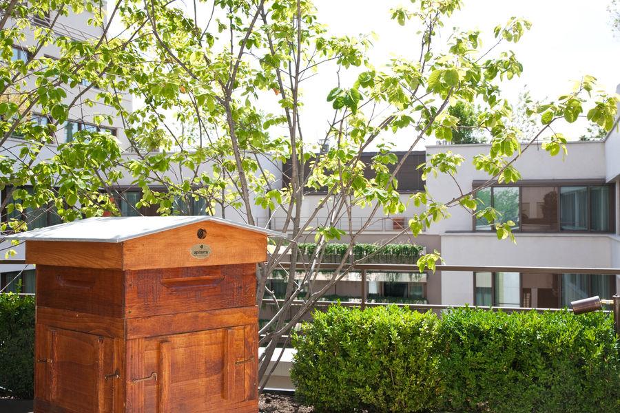 Hôtel Mandarin Oriental ***** Ruche