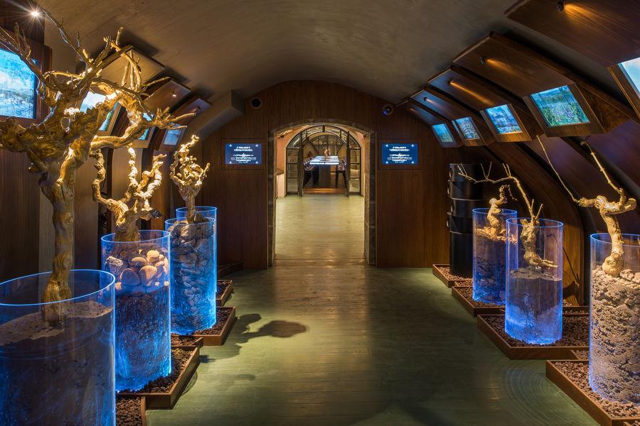 Les Caves du Louvre Espace Sensoriel: une découverte passionnante