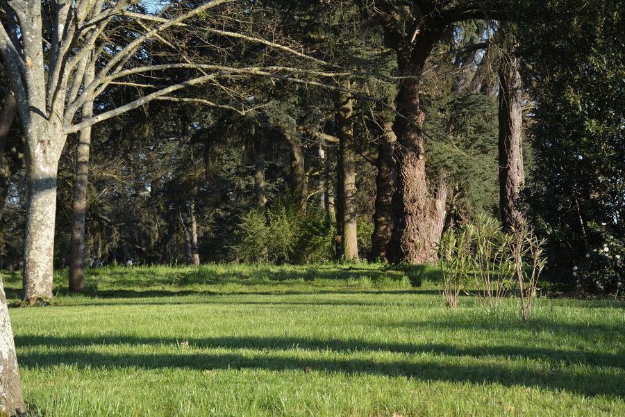 La Bastide Rouge Parc