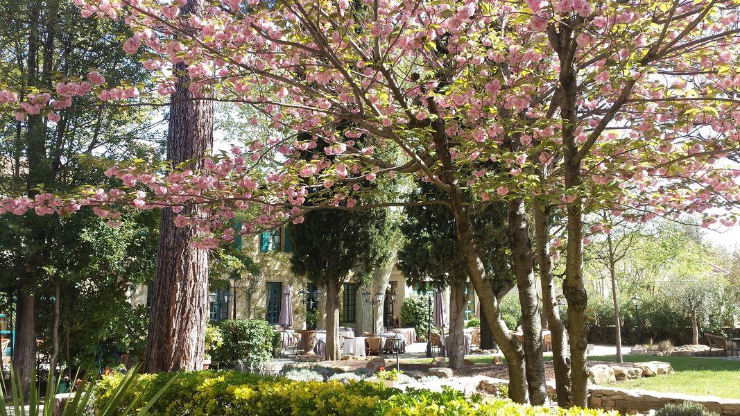 Najeti Hôtel la Magnaneraie **** Jardin de La Magnaneraie