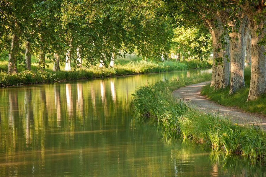 Le Mas Des Canelles Canal Du Midi