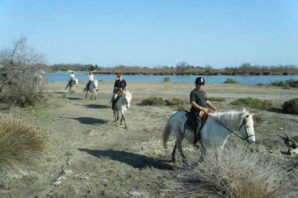 Mas de Calabrun Promenade à cheval