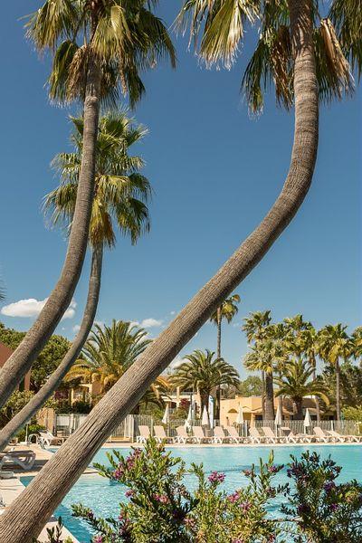Cannes-Mandelieu - Pierre & Vacances Piscine