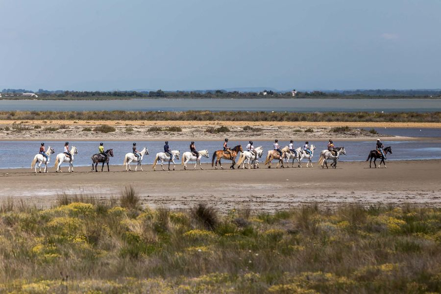 Auberge Cavalière du Pont des Bannes **** Balade à cheval sur la plage