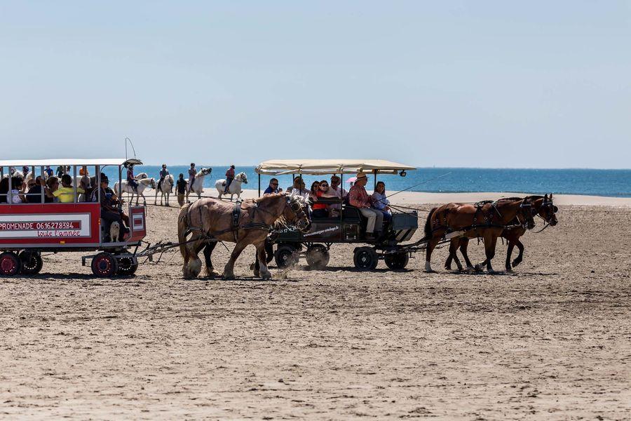 Auberge Cavalière du Pont des Bannes **** Calèche sur la plage