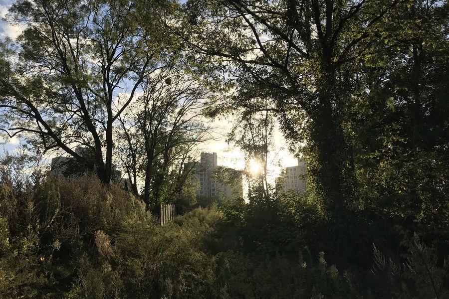 Fort d'Aubervilliers Espaces extérieurs