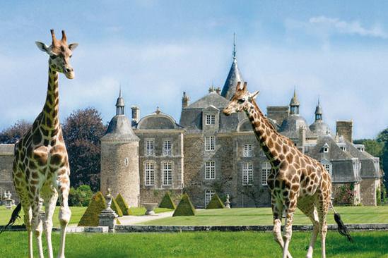 Domaine de la Bourbansais Parc Zoologique et ses spectacles