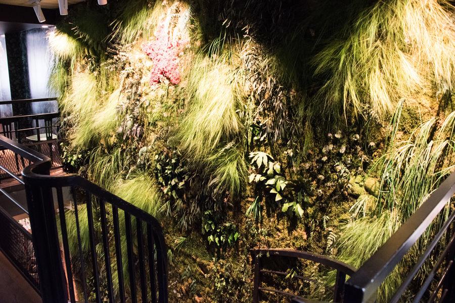 Le Café H  Mur Végétal de l'étage