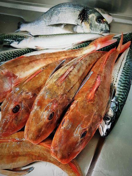 Les Etangs de l'Abbaye Arrivage de nos poissons de Dieppe