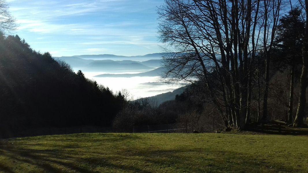 Villa Mathis *** Vue au Sud Exceptionnelle sur le parc et la Nature vosgienne