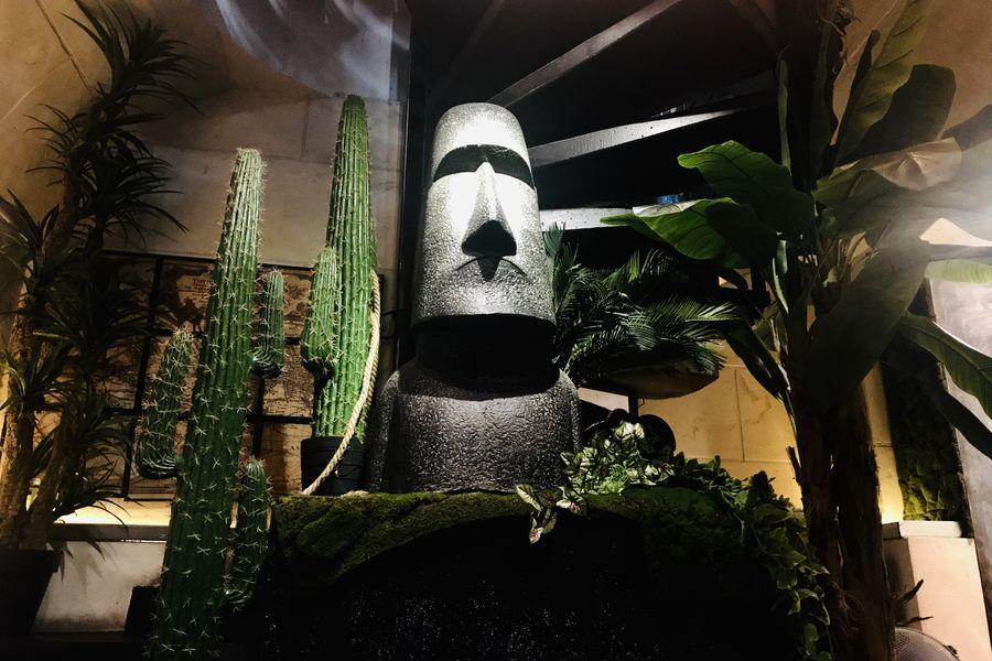 Le 153 Cactus Room