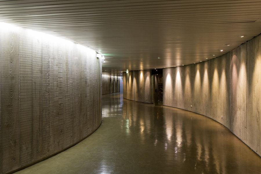 Espace Niemeyer 29