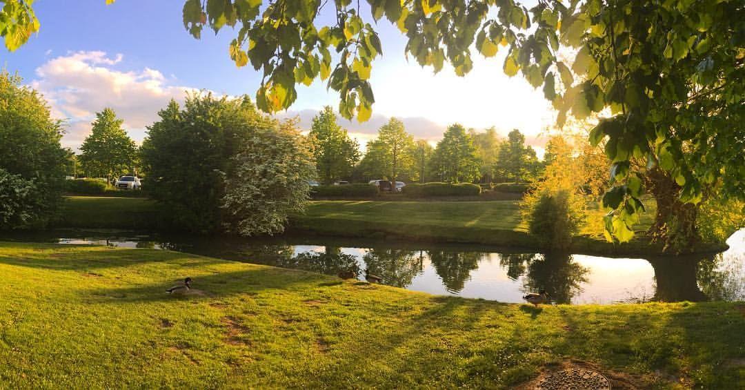 Pasino de Saint-Amand-les-Eaux **** jardin
