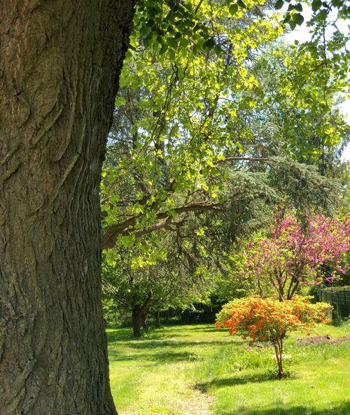 La Villa Rochette Parc fleuri
