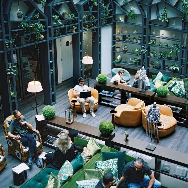 Kwerk Haussmann Lobby végétal