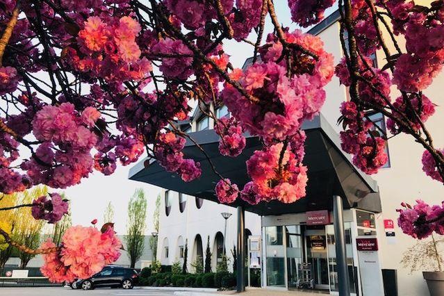 Mercure Beaune Centre **** Entrée hôtel