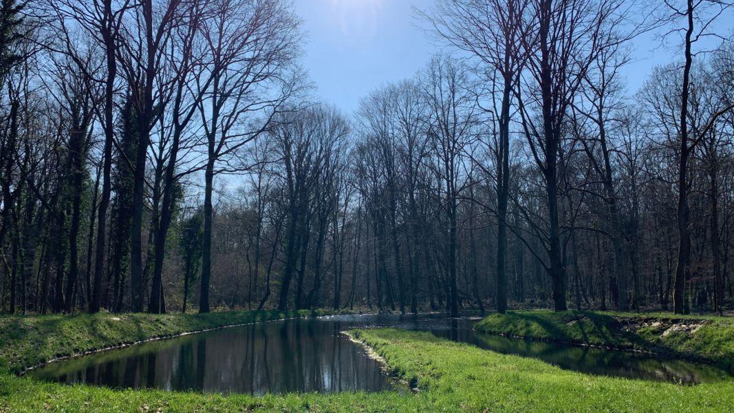Domaine de Montigny Parc du Domaine de Montigny