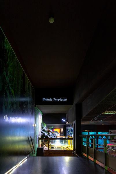 Aquarium de Lyon 23